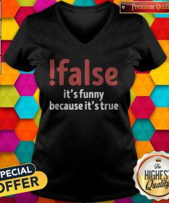 Premium False It's Funny Because It's True V-neck