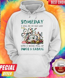 Someday I Will Be An Old Lady With A House Full Of Dogs And Fabric Quilt Hoodie