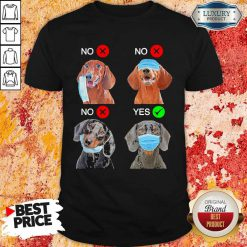 Dachshund Right Dogs Right Way To Wear Mask Shirt